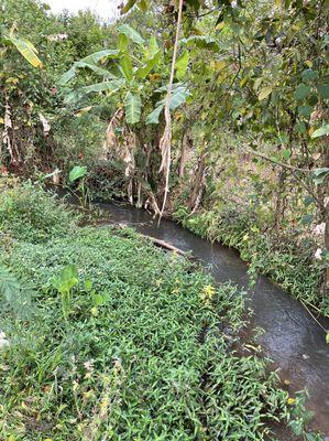 Cần bán lô đất view suối oto tận nơi Quang Thanh