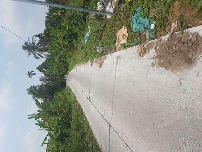 Bán đất 5000m2 huyện Thới Lai