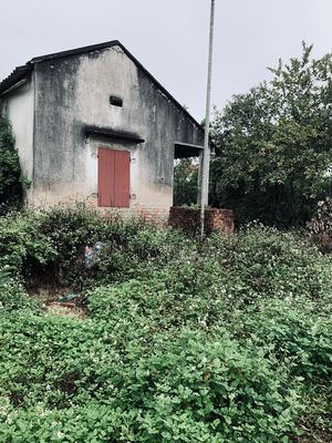 -Cần bán lô đất tại Minh Tân – Kiến Thuỵ 639m2