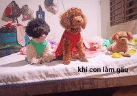 HUỲNH LAM KHANH