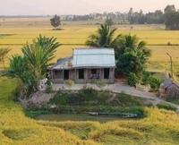 Đại Điền Khang