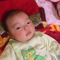 Hoang phi hong