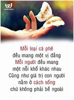Mr Phi