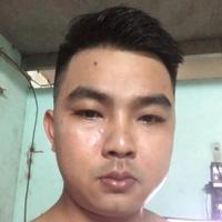 Phan Hồng niên