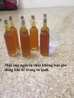 Phan Chung