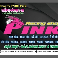 Pink Raider