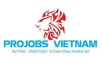 Công ty TNHH Projobs Việt Nam