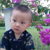 Tuyết Nguyễn
