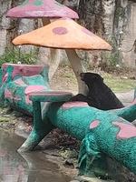 Thu Trinh