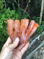 Mekong DriedFish