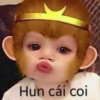 Nguyễn Minh Dũng