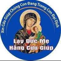 Bao Cuong Tran