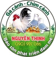 Nguyen thinh