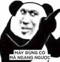 Bong Bóng
