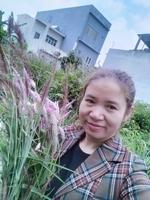 Tran Thuy