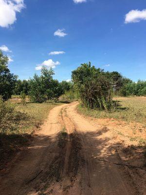 Đường liên huyện cắt ngang lô ở xã Hòa Thắng