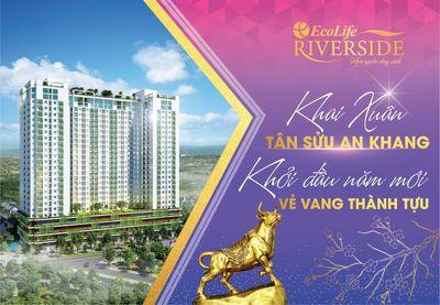 Ecolife Riverside Quy Nhơn- Căn hộ bên sông