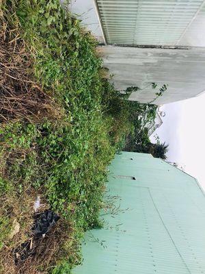 🔭Hạ giá Cuối Năm :Đất ngay Trung tâm TP Pleiku ✅