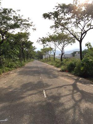 Cần bán gấp lô đất tdc Hoa ninh huyện hoà vang