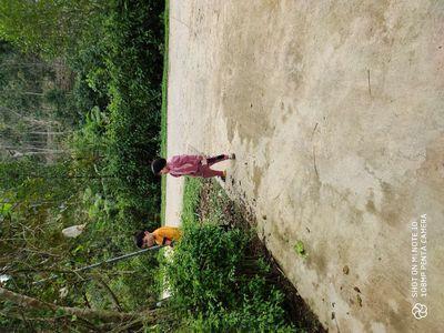 Nhà và vườn tại Hương Lâm