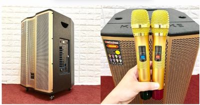 Loa kéo Bluetooth Temeisheng ED 1518 giá tầm trung