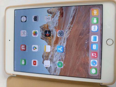 Ipad mini 4 wifi + 64GB mua tại TGDĐ