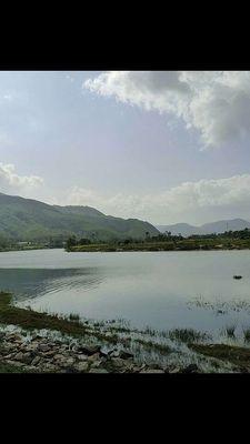 Đất Huyện Hòa Vang 29.000m2
