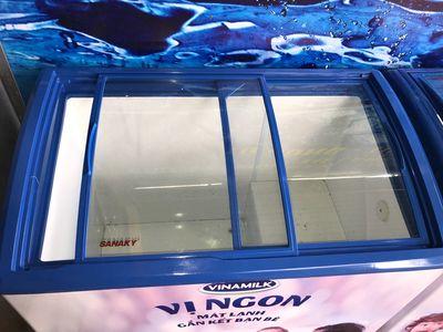 Tủ đông kem kính cong sanaky 300-600 l