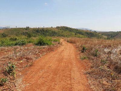 Đất nông nghiệp diện tích lớn, ĐakDoa, Gia Lai