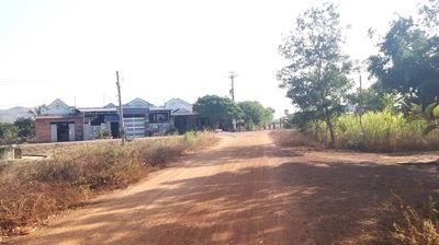 7000m2 cách đường chính  30m, Bình Thuận 750 triệu