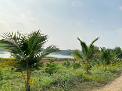Bán 18.000m2 đất trồng trái cây, Viêw hồ,núi đẹp.